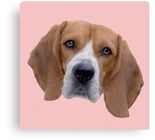 Beagle Love Canvas Print
