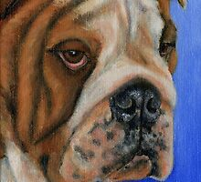 Bulldog - Oil painting by Michelle Wrighton by Michelle Wrighton
