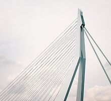 Erasmus Bridge by Jasper Smits