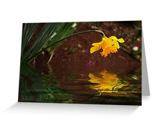 Daffodil Reflection Greeting Card