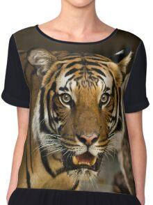 Tiger Wildcat Chiffon Top