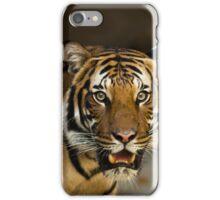 Tiger Wildcat iPhone Case/Skin
