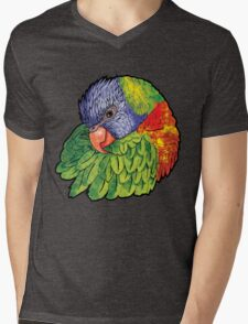 Lorikeet Mens V-Neck T-Shirt