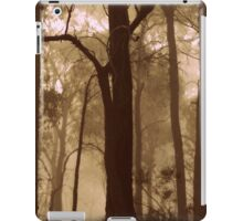 My Winter Solace iPad Case/Skin