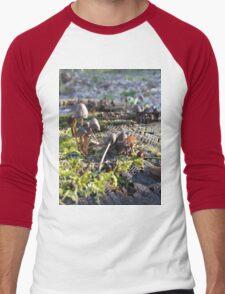 Shrooms Men's Baseball ¾ T-Shirt