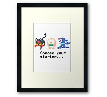7th Gen Starters Framed Print
