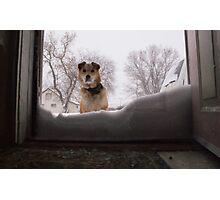 Snow day. Photographic Print