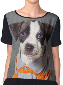 Shelter Pets Project - Scout Chiffon Top