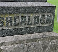 Sherlock's Grave by catherine chin yet