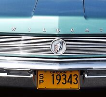 1964 Buick Wildcat by Greg Lester