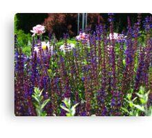 A little patch of garden Canvas Print