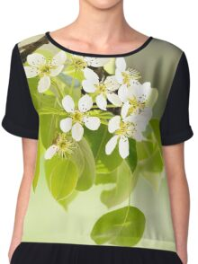 Cherry or Apple Flowers Chiffon Top