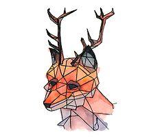 Foxalope by Shaylyn King