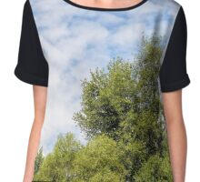 Cloudy Sky Over the trees Chiffon Top