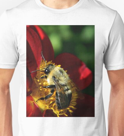 Close up of a bee Unisex T-Shirt