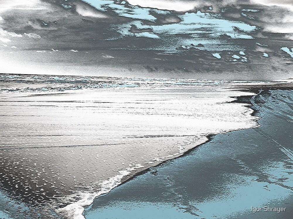 Silver Seascape I by Igor Shrayer