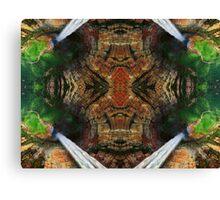 Bird Perspective MIrror- Waterfall Canvas Print