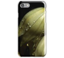 After rain... iPhone Case/Skin