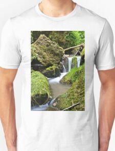 Mossy Glen Falls T-Shirt