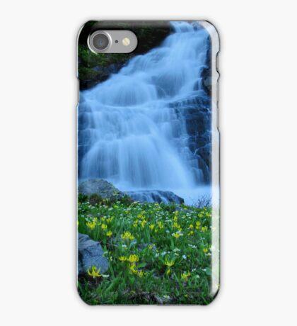Robinson Falls iPhone Case/Skin