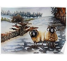 Woolly Jumper Weather Poster
