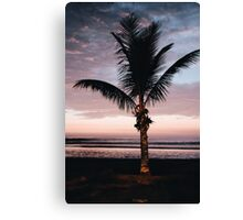 Plam tree relaxation Canvas Print