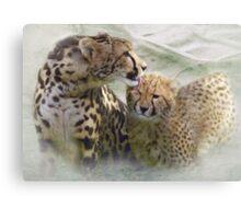 Wash Wash Kitty Cat Canvas Print