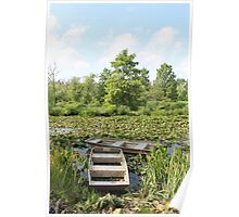 Kenilworth Aquatic Gardens Poster