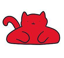 Red Cat Photographic Print