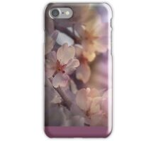 Colorful blossoms iPhone Case/Skin