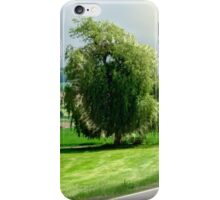 the willow near Silheim iPhone Case/Skin