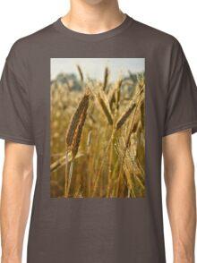 Ripening Wheat Classic T-Shirt