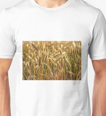 Ripening Wheat Field Unisex T-Shirt