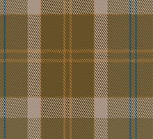 01405 Cladish Fashion Tartan  by Detnecs2013