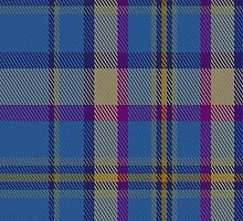 01403 Cian of Ely Tartan  by Detnecs2013