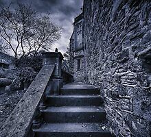 Into the Castle by mellosphoto