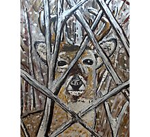 Deer Painting Design Photographic Print