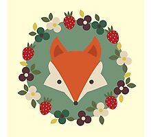 Mr Fox Photographic Print