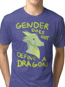 Gender Does Not Define Dragons Tri-blend T-Shirt