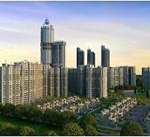 Registration of property by propertyverify
