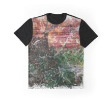 The Atlas Of Dreams - Color Plate 122 Graphic T-Shirt