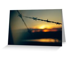 Barbed Wire at Dawn - Lens Interference 7. Greeting Card