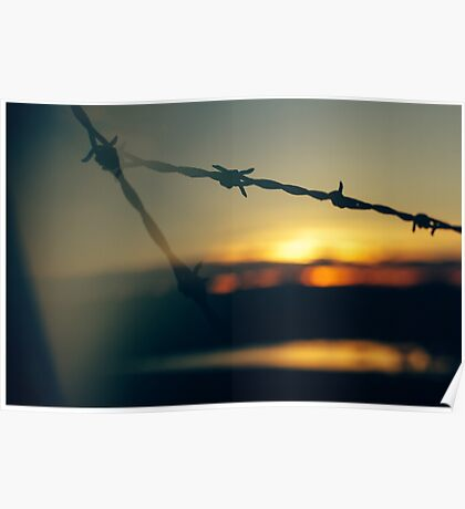 Barbed Wire at Dawn - Lens Interference 7. Poster