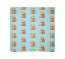 Baby Blue Toast Face Scarf