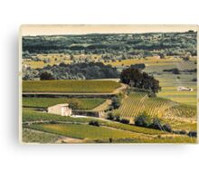 vintage vineyard landscape Canvas Print
