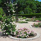 The Rose Garden, Rideau Hall, Ottawa, ON Canada by Shulie1