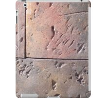 Steel Sculpture iPad Case/Skin