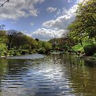 Peasholm Park Lake by Tom Gomez