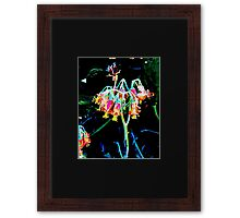 Yellow and Pink. Framed Print