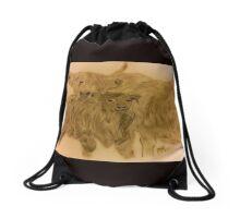 Highland Cattle  Drawstring Bag